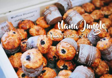 พาเที่ยวเชียงใหม่ ตอน Nana Jungle ขนมปังกลางป่าไผ่