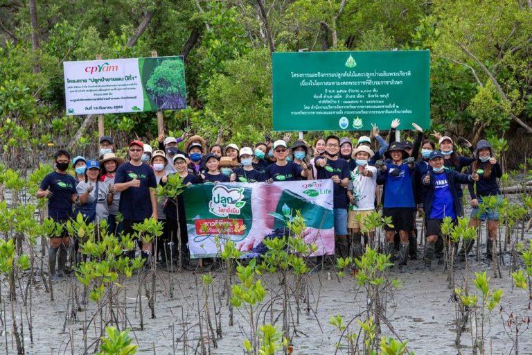 ซีพีแรม (ชลบุรี) เดินหน้าฟื้นฟูป่าเสื่อมโทรม เพื่อเพิ่มพื้นที่สีเขียว